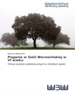 Mateusz Bętkowski, Poganie w Galii Merowińskiej w VI wiek